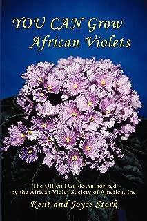 Best african violet buy Reviews