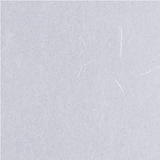 プラスチック 障子紙 ワーロンシート防炎製品認定 両面テープ で簡単に貼れる 強化障子紙 水拭きができる ワーロン 破れない ペット 超強 横幅 93㎝ × 高さ 185㎝ No.2 雲竜 1枚 専用ケース入り 障子/建具/貼り替え/簡単/D...