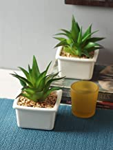 Fourwalls Artificial Succulent Plant with Ceramic Vase with Stone (16 cm Tall, Green, Set of 2)