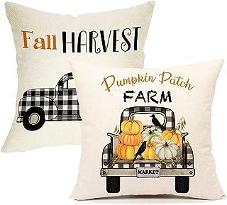 fall outdoor pillow