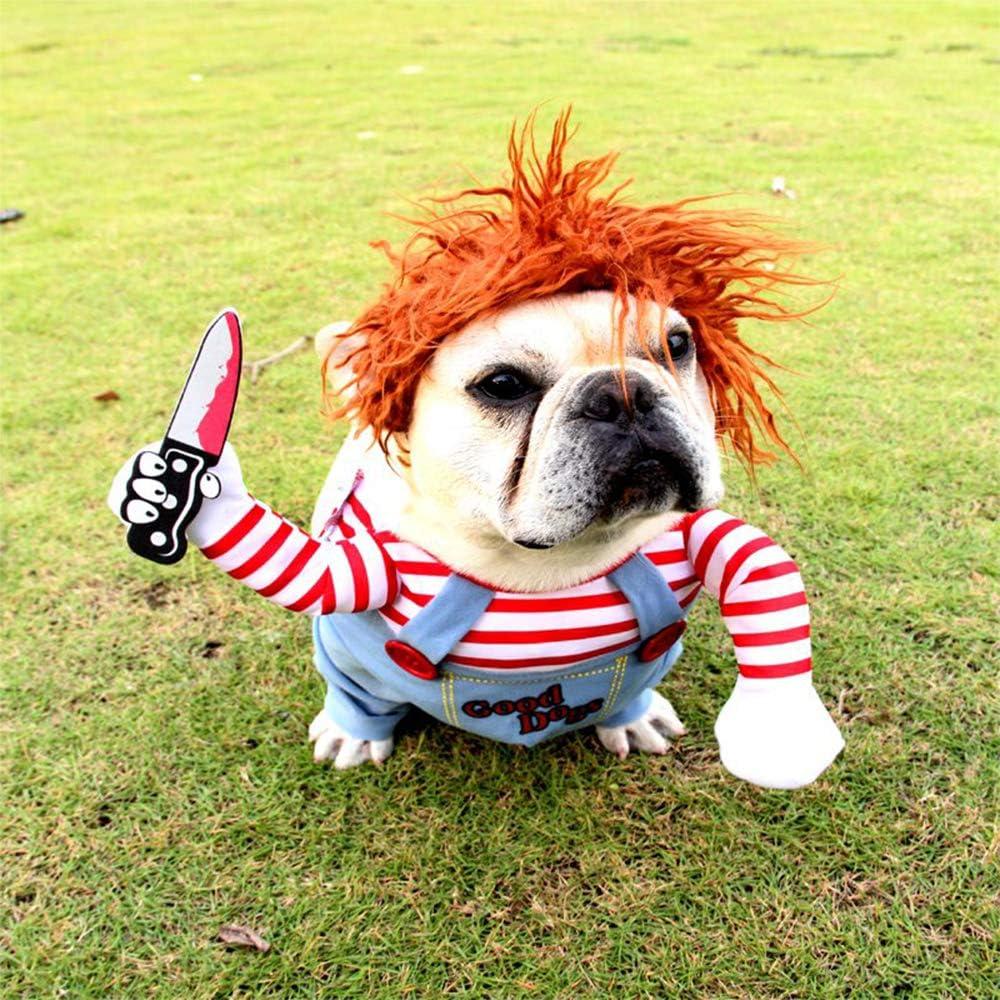 Bulldog in een Chucky hondenpakje
