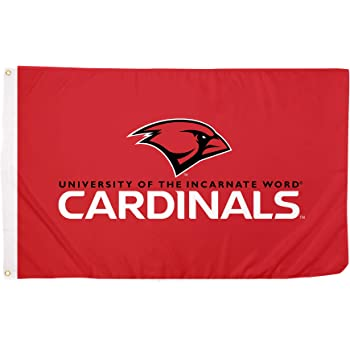 Desert Cactus New College of Florida The Null Set NCAA 100/% Polyester Indoor Outdoor 3 feet x 5 feet Flag