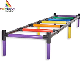 Do More With Your Dog Rainbow Ladder