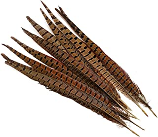 wanjin 10PCS Natural Pheasant Feathers Pheasant Tails 14-16 inch(35-40CM),Natural