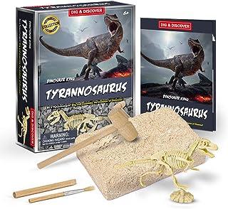 Dinosaur Fossil Digging Kit for kids, Dig It Up! Dinosaur Eggs Excavation Kit, Jurassic Park Dino Fossil Dig Kit, Great Sc...