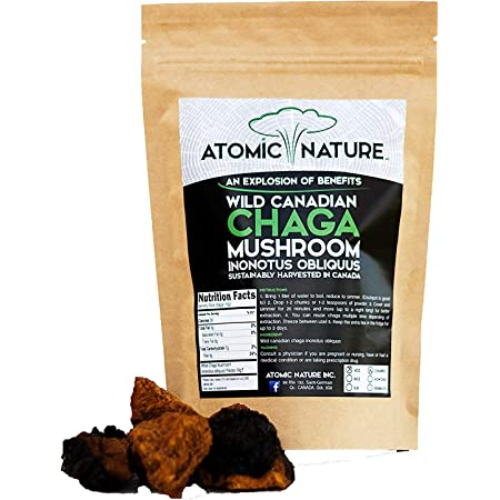 4oz Raw Organic Wild Chaga Mushroom Tea Chunks – 100% Natural Hand-Harvested Canadian Forest Chaga Superfood, Healthy Immune System Booster & Antioxidant, Perfect Size for Brewing