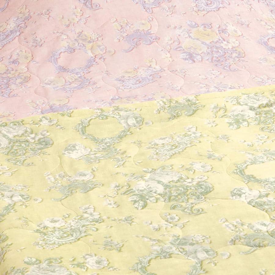 起きて技術行き当たりばったりロマンス小杉 真綿肌掛け布団 シングルサイズ 2重ガーゼ 抗菌防臭 洗える 肌掛けふとん 日本製 49538 ベージュ[40] シングル