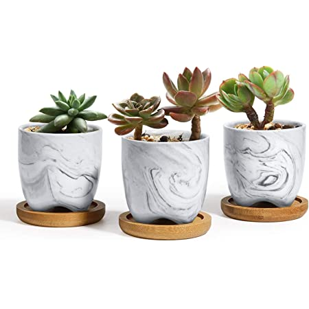 office pottery for succulent air plant and small foliage or as a pen holder Great holiday Black Planter with swirl design birthday gift