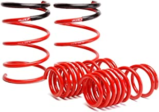 Skunk2 519-05-1575 Lowering Spring for Honda Civic Si