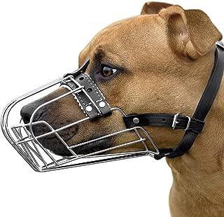 staffy muzzle