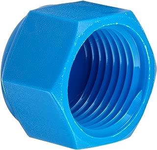 Tefen Nylon 6/6 Pipe Fitting, Cap, Blue, 3/8