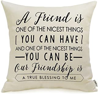 Meekio Friendship Gifts Decorative Throw Pillow Covers 18 x 18 with Friend Quotes