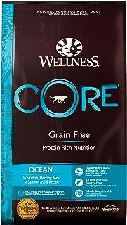Wellness Core Natural Dry Dog Food Ocean Whitefish, Herring & Salmon