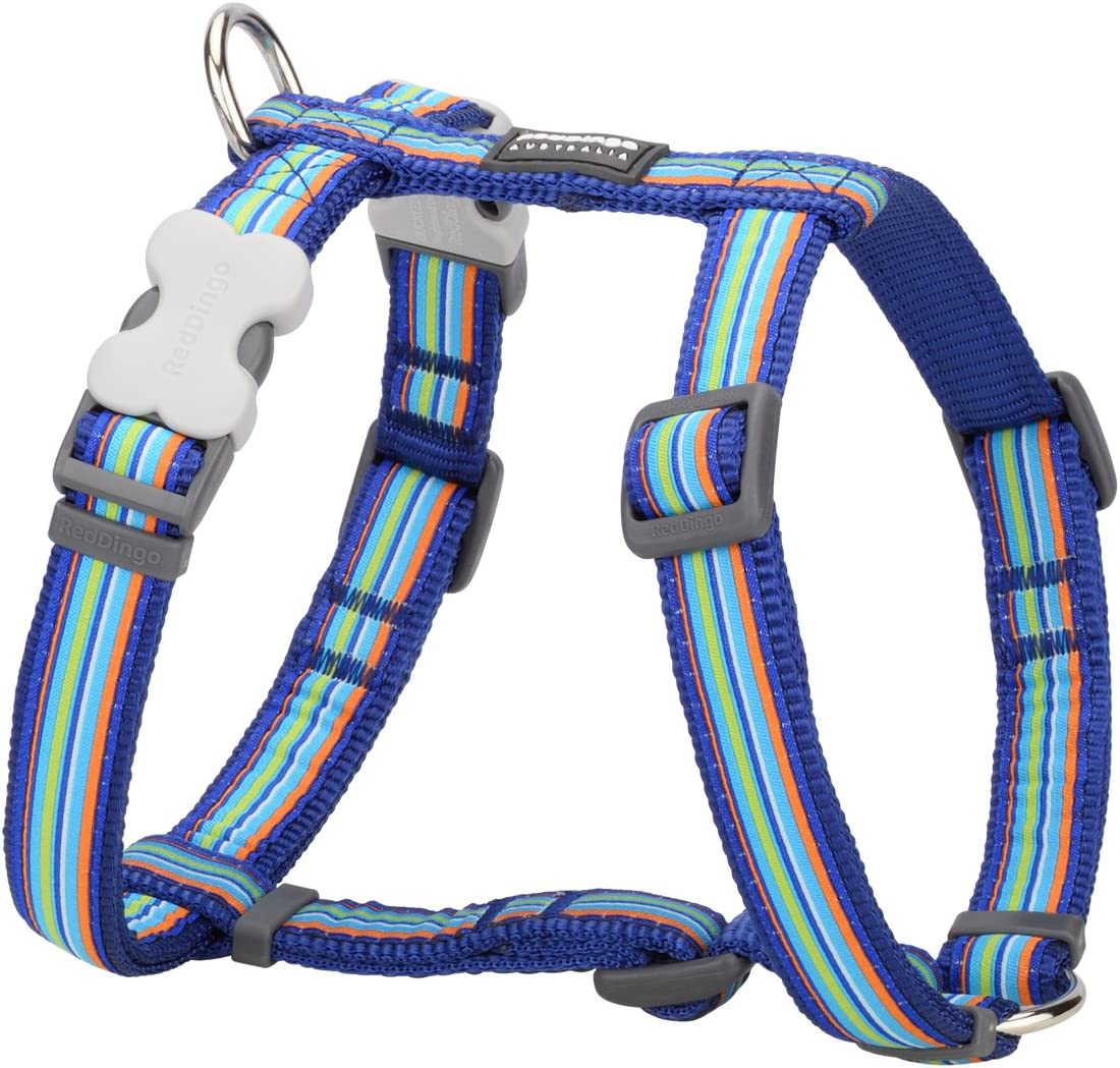 2021 autumn and winter new Red Dingo Stripe Dog Blue Harness Dark Large Reservation