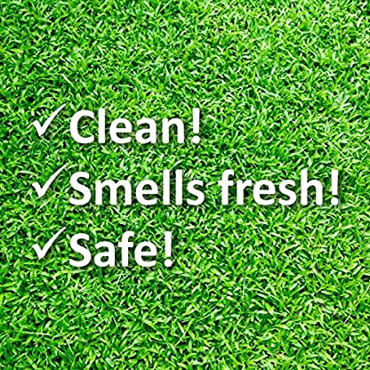 WEE FREE 5 Ltr Artificial Grass Cleaner and Pet Odour Eliminator for Dog Urine - Disinfectant, Neutraliser and Deodoriser for Dog Wee on Astro Turf and Fake Lawns. Safe for Dogs and Animals. 4