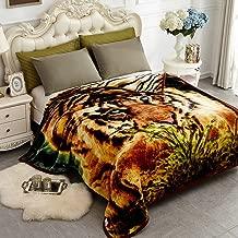 Best tigger comforter blanket Reviews