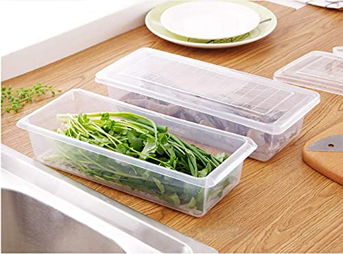 MosQuick Set of 2 Food Storage Container with Removable Drain Plate and Lid Stackable Freezer Storage Containers Keep Fresh for Storing Fruits Vegetables Meat Fish etc and More