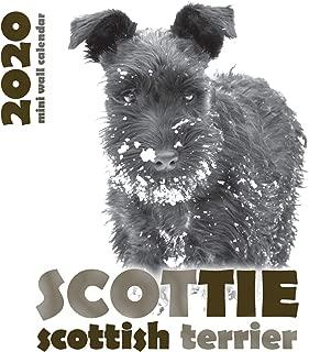 Scottie: Scottish Terrier 2020 Mini Wall Calendar