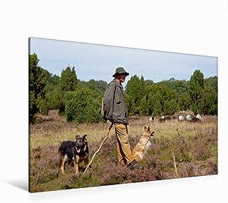 Premium - Lienzo textil (120 x 80 cm, horizontal, diseño de pastor con rebosaderos, imagen sobre bastidor) Lüneburger Heide (CALVENDO Orte);CALVENDO Orte