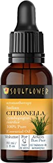 Citronella Essential Oil by Soulflower, Pure Indian Undiluted, Organic, Best Therapeutic Grade,Natural and Safe, Vegan, Ar...