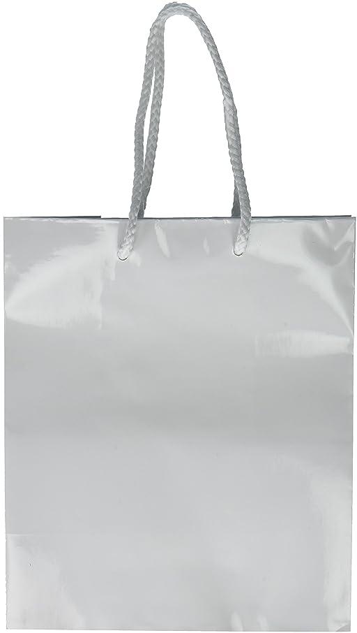 Amscan White Solid Glossy Bag Medium   12 Ct.