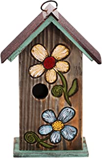 blue jay bird house design