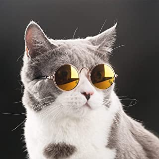 Best cat glasses for cats Reviews