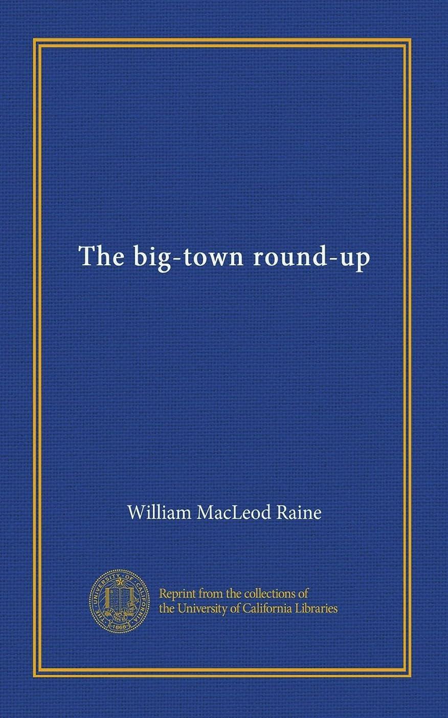 懇願する海里定義The big-town round-up
