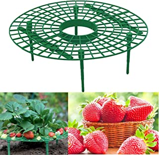 Zafina-UP 5 PCS Strawberry Supports,Strawberry Plant Support,Keep Strawberries Off Rot in The Rainy Days