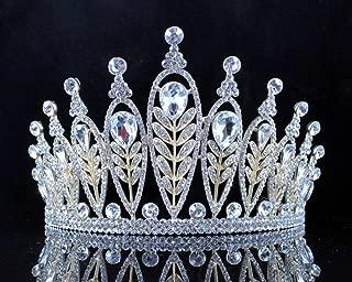 Janefashions Elegant Floral Clear Crystal Rhinestone Tiara Crown Bridal Prom Pageant T11885 Gold