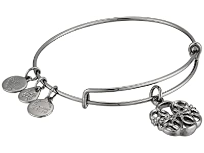 Alex and Ani Path of Symbols-Path of Life IV Bangle (Midnight Silver) Bracelet