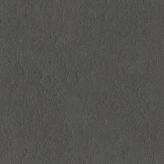 Bazzill Basics Paper T19-10150 Prismatic Cardstock, 25 Sheets, 12 by 12-Inch, Zinc