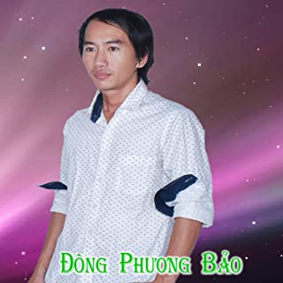 bao phuong dong
