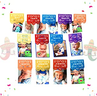 JeVenis Picado 12 Monthly Photo Banner Fiesta First Birthday Banner Fiesta Monthly Photo Banner Taco bout a party Picture Banner for First Fiesta Decorations Fiesta Baby Shower