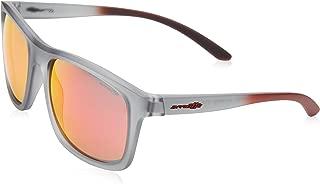 Arnette COMPLEMENTARY AN4233-24236Q Sunglasses Matte Transparent Grey 57mm