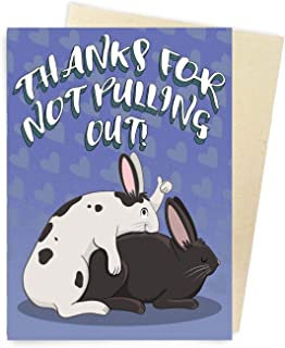 Sleazy Greetings Funny Father's Day Card | Adult Humor Birthday Card for Dad | Humorous Father's Day Appreciation (Thanks For Not Pulling Out)