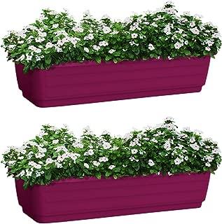 ALMI Atzmon TerraBox Window Planter 24 in [2 Pack] Elegant Shaped Flower Tree Pot for Garden, Home Decor Planter for Plants, Small Trees, Plant Pot, UV Resistant Paint, Indoor & Outdoor, Purple
