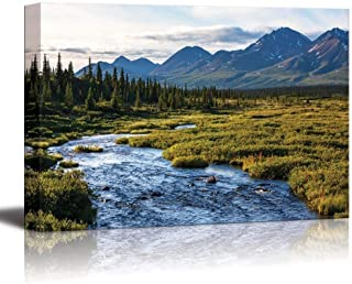 Libaoge Canvas Printing Wall Art - River in Tundra on Alaska| Modern Home Deoration/Wall Decor Giclee Printing Wrapped Canvas Art Ready to Hang - 8