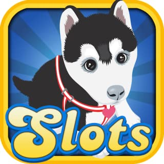 Cats & Dogs Slots Casino in Vegas Downtown Free Gambling Games with your Friends for Android & Kindle Fire