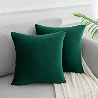 WLNUI Set of 2 Soft Velvet Solid Dark Green Decorative Square Throw Pillow Covers Set Cushion Case for Sofa Couch Home Decor 18x18 Inches 45x45 cm
