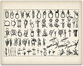 Knots Illustration - 11x14 Unframed Art Print - Great Home Decor Under $15