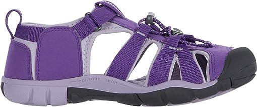 Royal Purple/Lavender Gray