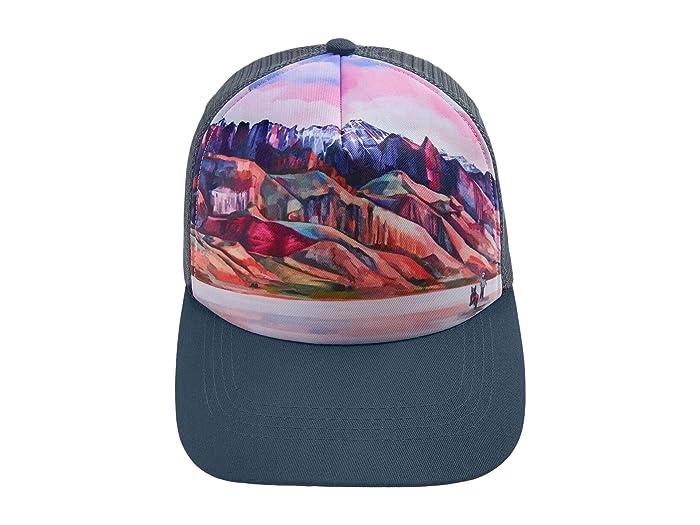 Artist Series Hat (Alvord Desert) Dog Accessories