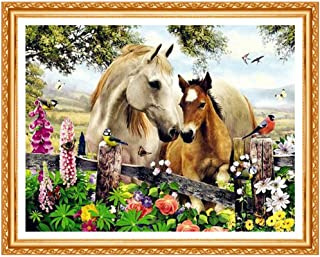 Huanxidp DIY Diamond Painting Horse and Birds Full Square Diamond Embroidery Animals Cross Stitch Rhinestone Painting No F...