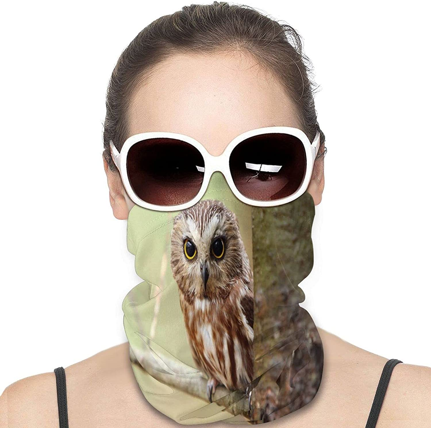 Cute Owl Round Neck Gaiter Bandnas Face Cover Uv Protection Prevent bask in Ice Scarf Headbands Perfect for Motorcycle Cycling Running Festival Raves Outdoors