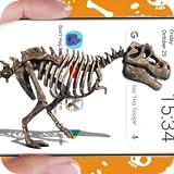 Esqueleto de dinossauro anda no telefone piada