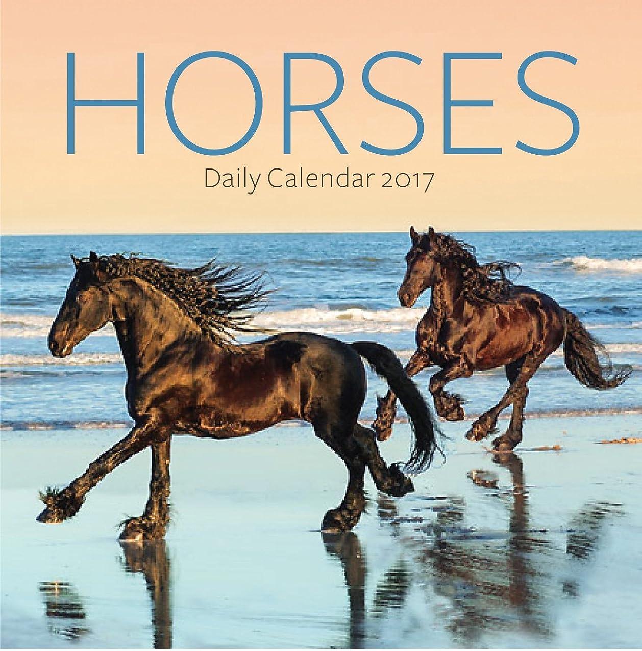 緑ピカリング見出しターナー写真2017?HorsesフォトDaily Boxedカレンダー(17998970009?)