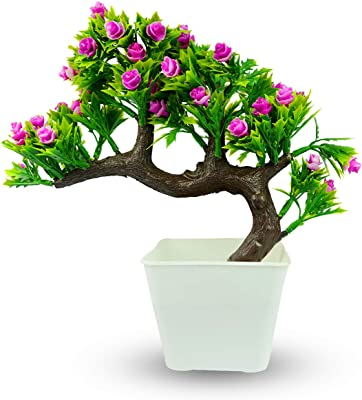 Reiki Crystal Products Beautiful Artificial Bonsai Tree & Plant | Bonsai Plant with Pot | Bonsai Tree for Indoor Office Home Decor Showpiece