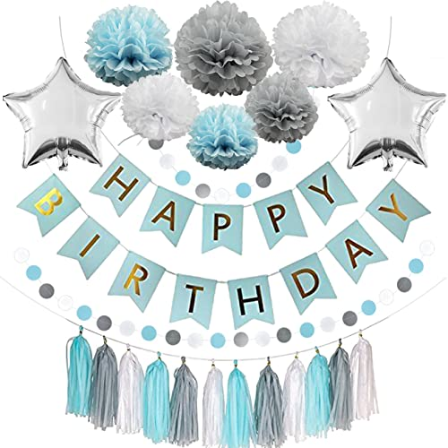 Blue Birthday Party Decorations Happy Banner 6 Pom Flowers12 Tassels
