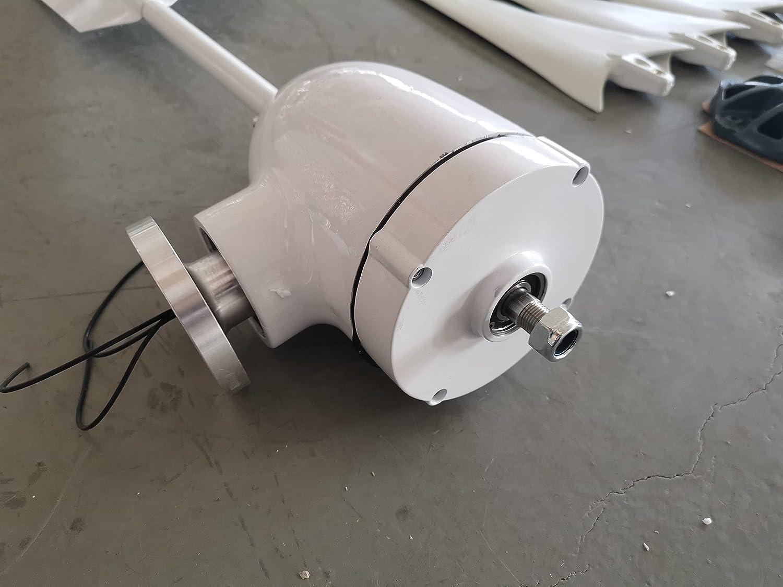 Aerogeneradores Generador de turbina de viento horizontal de 500 W Real 12 V 24 V 48 V 3/5 Blades Moldelador de viento Uso de la casa + 600 W Controlador de cargador impermeable Energía solar y eólica